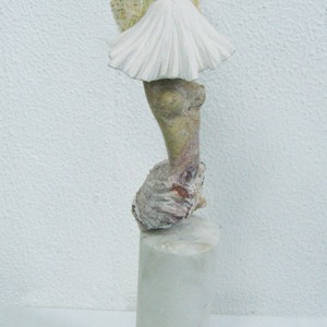 José Plácido - indisfarçavel timidez, 2013-15