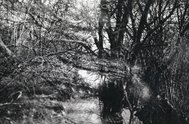 Daniela Nunes - 40-7287943, 2015, Caneta e raspagem sobre Impressão Fotográfica (120 mm), 30x40cm