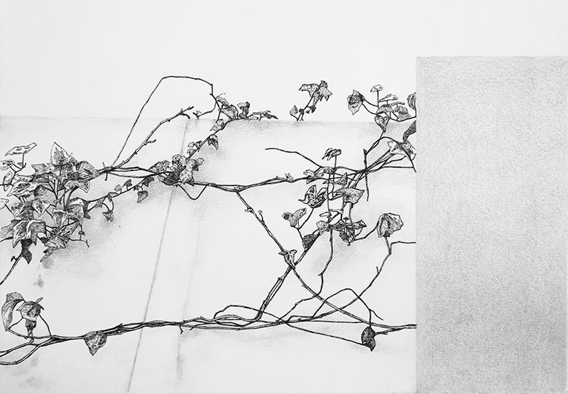 Daniela Nunes - hera ou sou 1, 2016, grafite e caneta sobre papel, 21x27cm