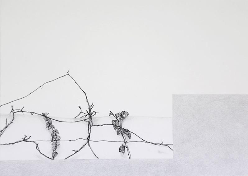 Daniela Nunes - hera ou sou 5, 2016, grafite e caneta sobre papel, 21x27cm
