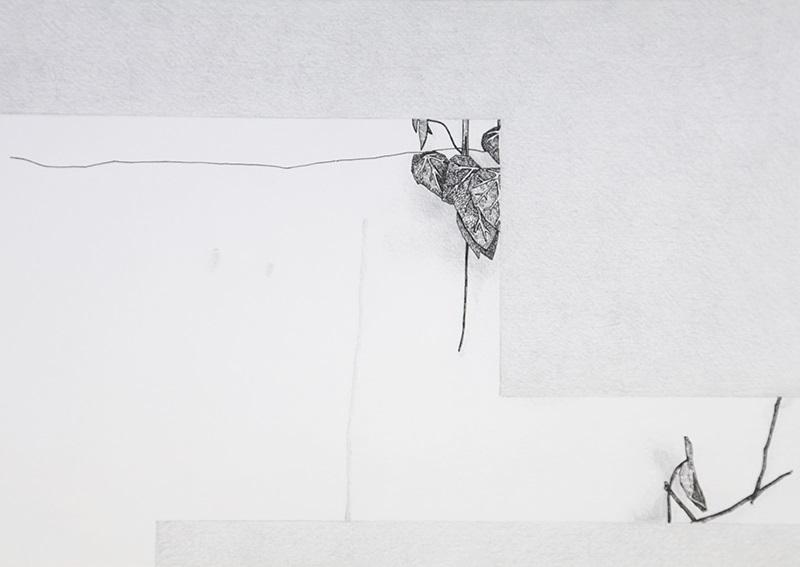 Daniela Nunes - hera ou sou 7, 2016, grafite e caneta sobre papel, 21x27cm