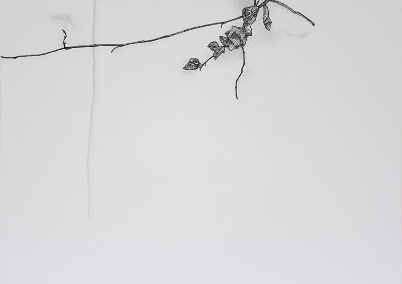 Daniela Nunes - hera ou sou 9, 2016, grafite e caneta sobre papel, 21x27cm