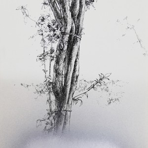 Jorge-Abade-Restless-image-2018-tinta-china-spray-prateado-e-decalque-297x21cm