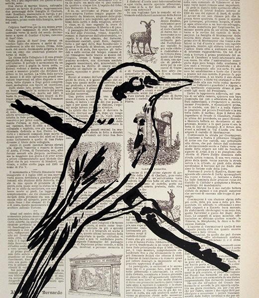 Jorge Leal - st bird, 2016, tinta china s papel, 45x30cm