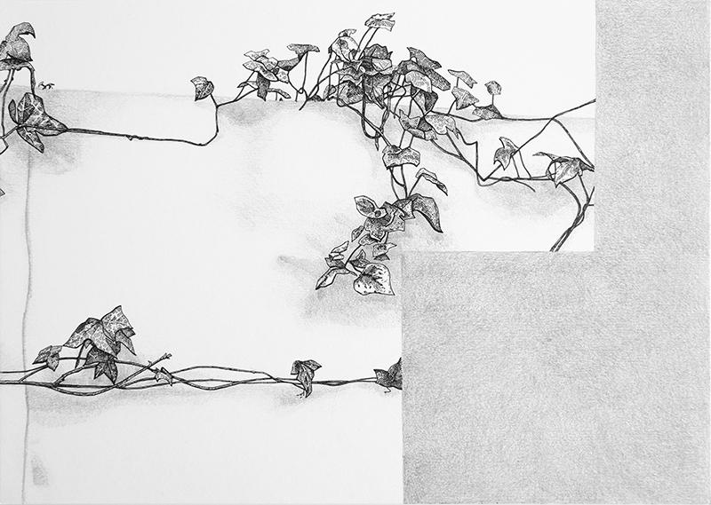 Daniela Nunes - hera ou sou 3, 2016, grafite e caneta sobre papel, 21x27cm
