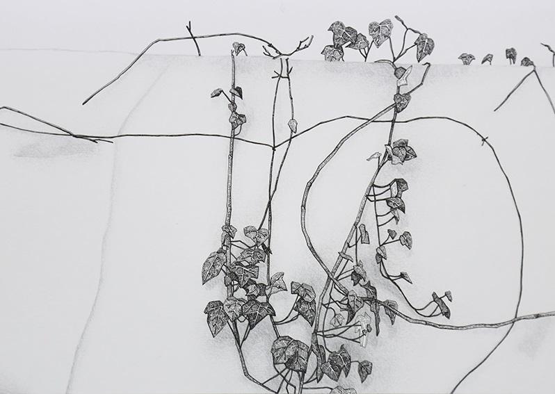 Daniela Nunes - hera ou sou 4, 2016, grafite e caneta sobre papel, 21x27cm