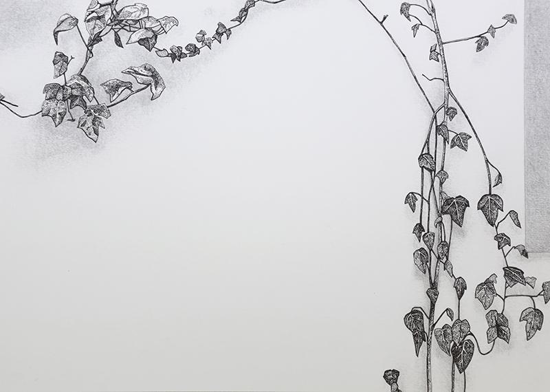 Daniela Nunes - hera ou sou 6, 2016, grafite e caneta sobre papel, 21x27cm