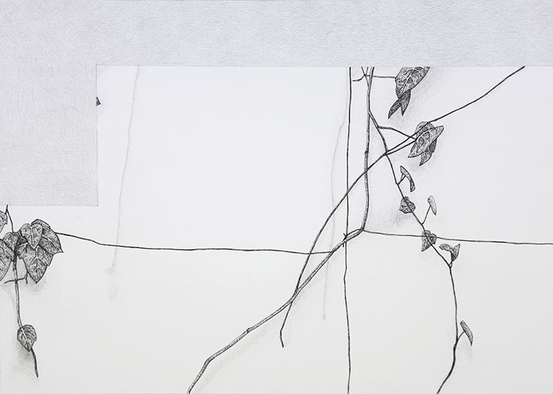 Daniela Nunes - hera ou sou 8, 2016, grafite e caneta sobre papel, 21x27cm