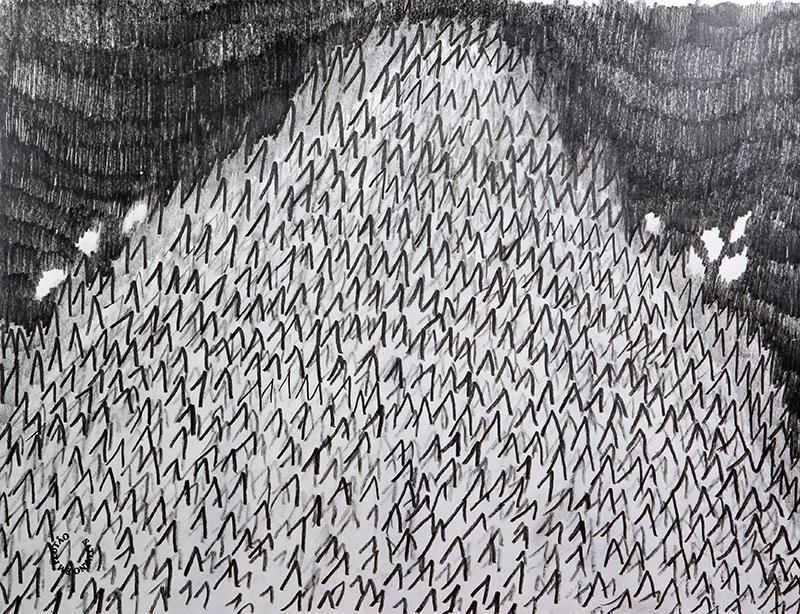 Luis Silveirinha - Saturno em plutao 6A ,grafite sobre papel, 55x47 cm, 2019