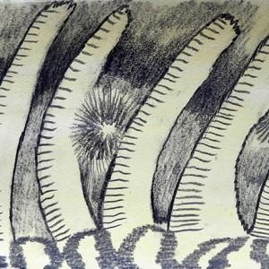 Luis Silveirinha, Liquid 4, 26,5X76 cm, grafite e guache spapel, 2019,