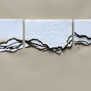 Patricia Geraldes - caderno de fogo all, fogo de plantas medicinais sobre papel, 13x17cm, 2019