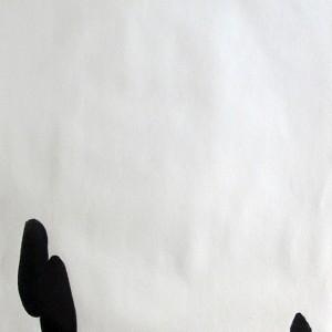 Sebastião Castelo Lopes - o que temos para dizer, 2019, 21x29,7cm, conté s papel