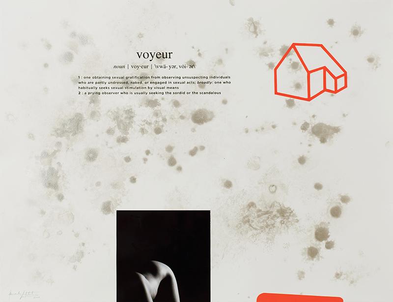 Alexandre Baptista - INSIDEDOTCOM 18, 50x65, 2016, acrilico, fotografia, serigrafia s papel