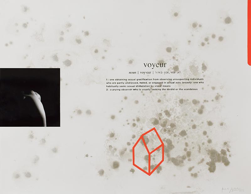 Alexandre Baptista - INSIDEDOTCOM 19, 50x65, 2016, acrilico, fotografia, serigrafia s papel
