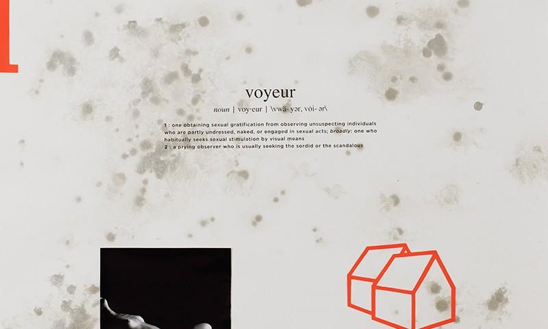Alexandre Baptista - INSIDEDOTCOM 20, 50x65, 2016, acrilico, fotografia, serigrafia s papel