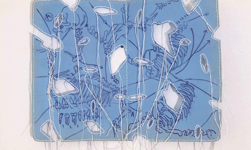 Pedro Valdez Cardoso - sem titulo-serie desenhos de campo, 2009, esferografica, linha e recortes s esponja, 38x47cm H