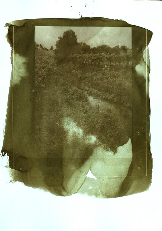 Joaquim Jesus -Série Pregas no tempo 04, fotografia artesanal s papel offset, 70x50cm