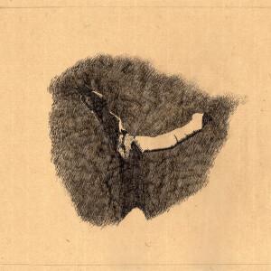 Maria capelo - st 2017, caneta s papel oriental, 25x26,5cm