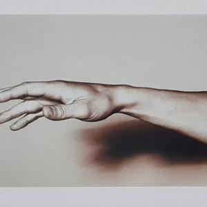 Julieta Domingos, st 2, 2009, fotografia, 19x28,5cm BD